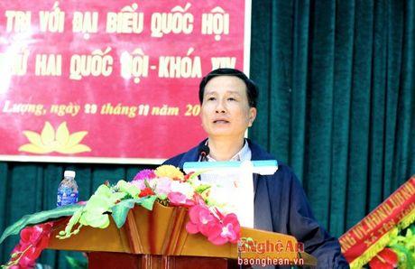 Cu tri Tuong Duong: De nghi tang chi phi dich vu moi truong rung - Anh 1