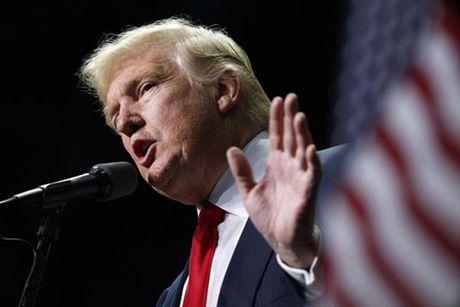 Nha Trang bac cao buoc cua Trump ve gian lan phieu bau - Anh 1