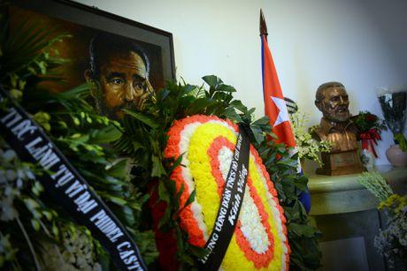 Nguoi dan ong My mang anh Fidel Castro di vieng vi nguong mo - Anh 7