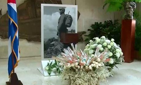 Cuba cong bo hinh anh hop dung di hai Fidel Castro - Anh 1