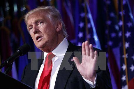 Tong thong dac cu My Donald Trump doa bo tu nguoi dot quoc ky - Anh 1