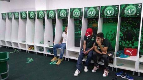 Thu thanh Danilo cua Chapecoense qua doi vi vet thuong qua nang - Anh 3