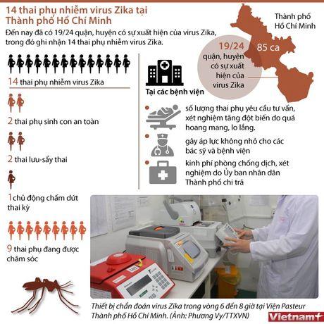 14 thai phu nhiem virus Zika tai Thanh pho Ho Chi Minh - Anh 1