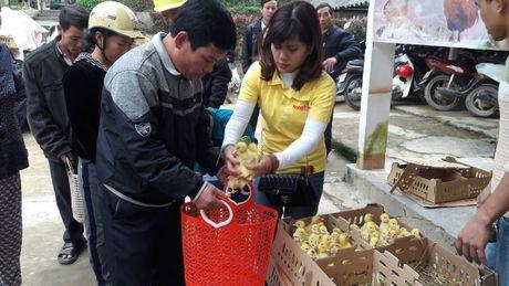 Bao NTNN/ Dan Viet: Ho tro con giong cho ba con vung ron lu - Anh 1