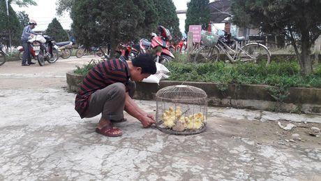 Bao NTNN/ Dan Viet: Ho tro con giong cho ba con vung ron lu - Anh 3