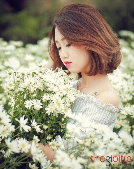 10X khoe ve dep tinh khoi giua vuon cuc hoa mi - Anh 2