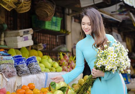 Cuc hoa mi Ha Noi khoe sac ben thieu nu Sai Gon - Anh 6