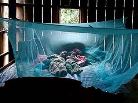 Tay Ninh: Cong bo dich Zika quy mo xa, phuong - Anh 1