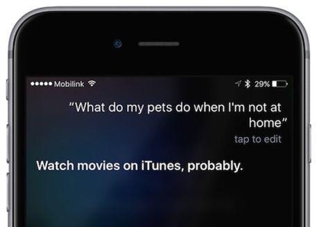 "Siri bi ""tom gay"" quang cao tra hinh cho phim cua Univesal - Anh 1"