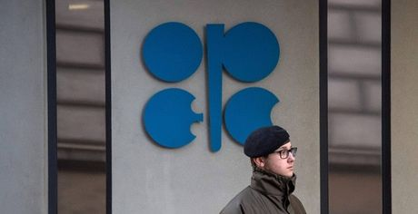 OPEC nhom hop, gia dau tang vot - Anh 1