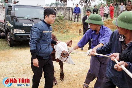 MC Phan Anh trao bo cho ba con vung lu Huong Khe - Anh 2