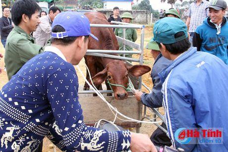 MC Phan Anh trao bo cho ba con vung lu Huong Khe - Anh 3