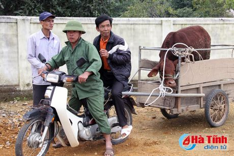 MC Phan Anh trao bo cho ba con vung lu Huong Khe - Anh 8