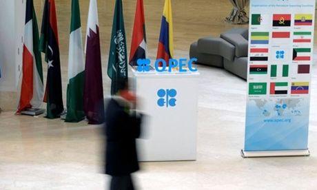 Gia dau lao doc truoc nguy co vo thoa thuan cua OPEC - Anh 1
