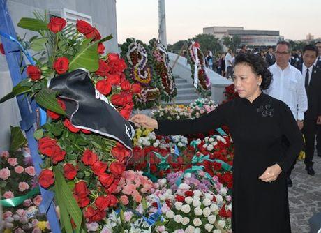 Viet Nam la doan quoc te dau tien den Cuba vieng lanh tu Fidel Castro - Anh 1