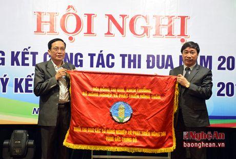 Nganh nong nghiep Nghe An dan dau khoi thi dua vung Bac Trung bo - Anh 3