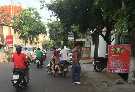 Khong khoi to hinh su vu cuop HSDT o Binh Dinh - Anh 1