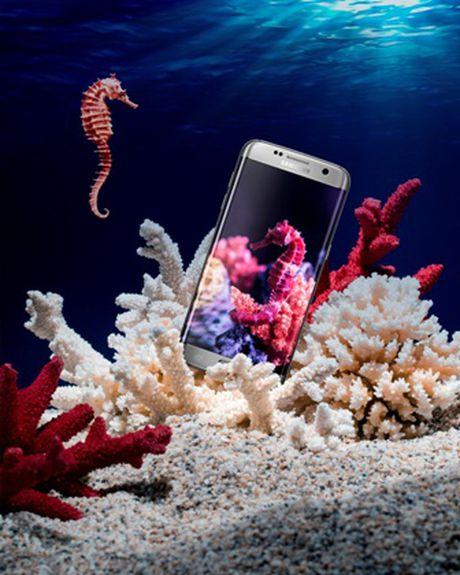 Nhung sac mau 'trieu Like' tren bo suu tap Galaxy S7/S7 edge - Anh 7