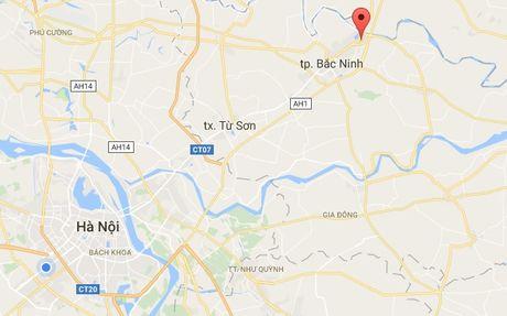 Bi bat vi mang vat giong luu dan di doi tai san - Anh 1