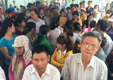 Buoc nguoi dan doi giay phep lai xe con thoi han la 'khong co co so phap ly' - Anh 2