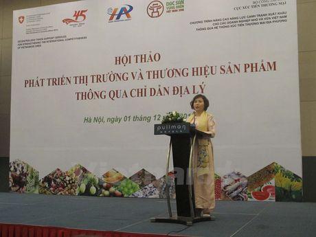 Nhan rong bao ho chi dan dia ly va bai hoc nuoc mam Phu Quoc - Anh 2
