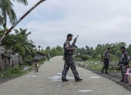 Myanmar: Cac nhom vu trang tiep tuc tan cong tien don o mien Bac - Anh 1