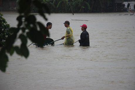 Binh Dinh: Mua lu, hang ngan ngoi nha chim trong bien nuoc - Anh 2