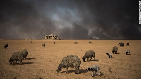 Chien su Mosul: IS su dung nuoc lam 'vu khi' - Anh 2