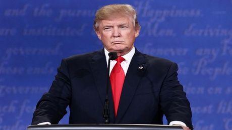 Donald Trump thong bao tu bo viec kinh doanh de tap trung lanh dao dat nuoc - Anh 1