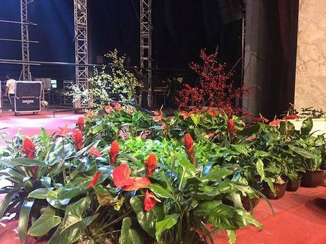 Gala Tet van loc 2017 truoc gio G lo dien dan am thanh, anh sang 'khung' - Anh 4