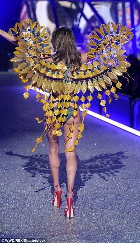 Trang phuc khien cac co gai 'them muon' nhat trong Fashion Show cua Victoria - Anh 13