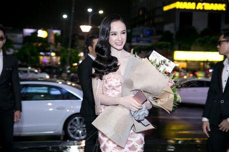Angela Phuong Trinh duoc hang chuc ve si ho tong - Anh 2