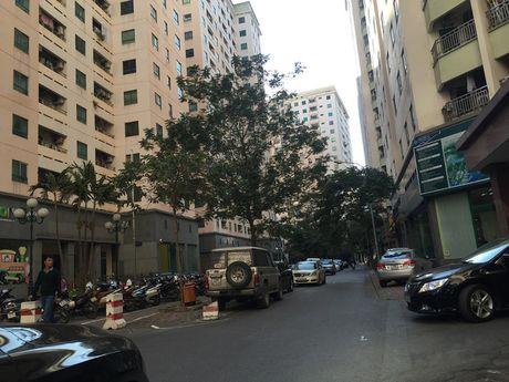 1km cong 40 toa nha cao tang: Dan nha giau ru nhau bo khu chung cu cu Trung Hoa Nhan Chinh - Anh 4
