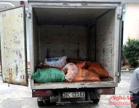 Bat xe cho 400 kg mo trau, bo, top mo khong co nguon goc - Anh 1