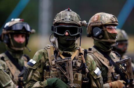 NATO dao nguoc nen quoc phong manh me dap tra quan ngai Trump - Anh 1