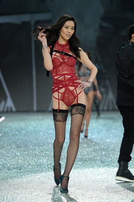 Nhung man trinh dien boc lua nhat Victoria's Secret Show - Anh 16