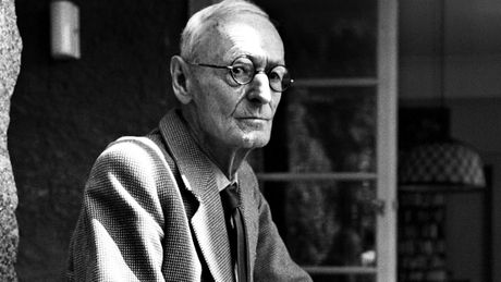 Hermann Hesse: Dong song chay mai trong tran gian - Anh 1