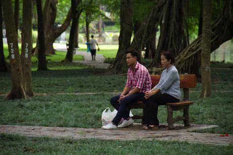 """""""Chieu ngang qua pho cu"""" len song gio vang phim Viet tren VTV1 - Anh 1"""