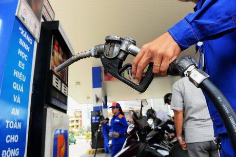OPEC giam san luong, gia dau tang manh - Anh 1