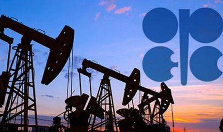 OPEC - Nga bat tay, gia dau tang nhung kho ben - Anh 1