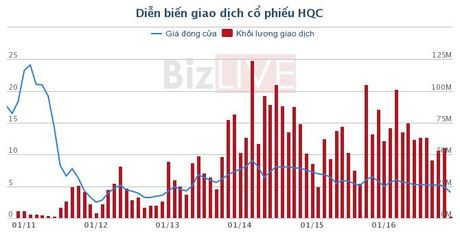 HQC: Hoang Quan Me Kong da mua vao hon 4,6 trieu co phieu - Anh 1