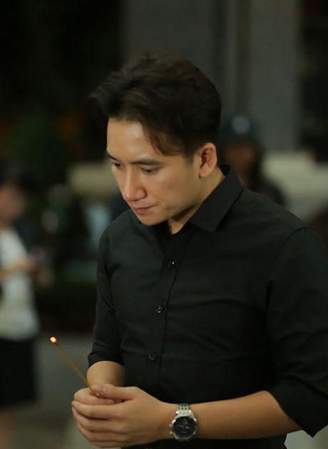Sao Viet khoc lang truoc linh cuu NSUT Quang Ly - Anh 4