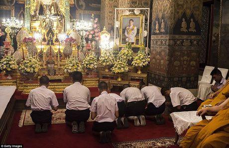 Chum anh: Hoang Thai tu Thai Lan Vajiralongkorn trong nghi le len ngoi vua - Anh 3