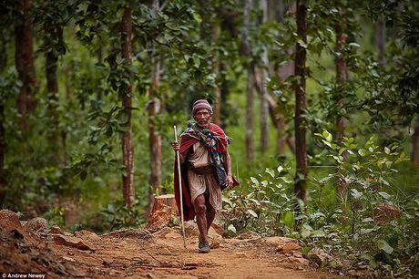 Kham pha cuoc song cua nhung nguoi du muc o Nepal qua anh - Anh 1