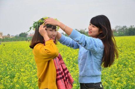 Chum anh: Gioi tre phat cuong voi thien duong hoa cai no ro o Thai Binh - Anh 10
