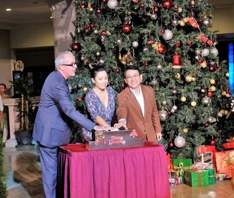 Da Nang: Ruc ro le thap sang cay thong 10m, don Noel - Anh 1