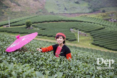Hay len Chau Moc mua Man no hoa - Anh 21