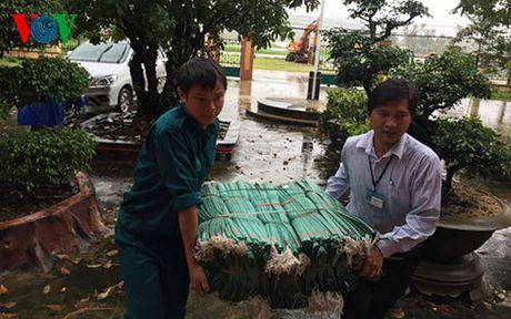 Mua lu tai Binh Dinh: Lu rut nhanh, cac xa khong con bi chia cat - Anh 3