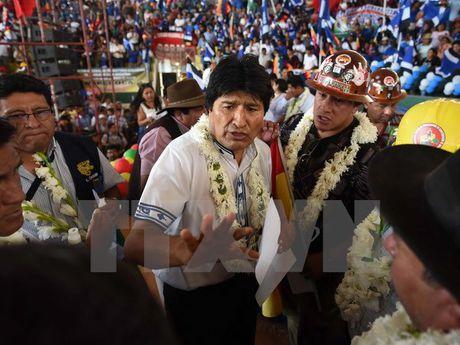 Tong thong Bolivia ra tranh cu, thach thuc ket qua trung cau y dan - Anh 1