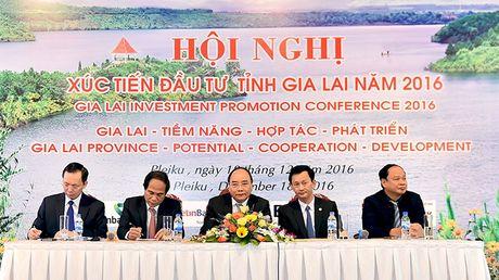 Thu tuong: Chinh quyen phai '3 cung' voi doanh nghiep - Anh 1